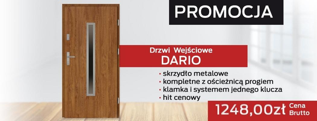 Drzwi wejściowe Dario